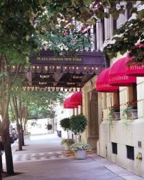 Plaza Athenee*****
